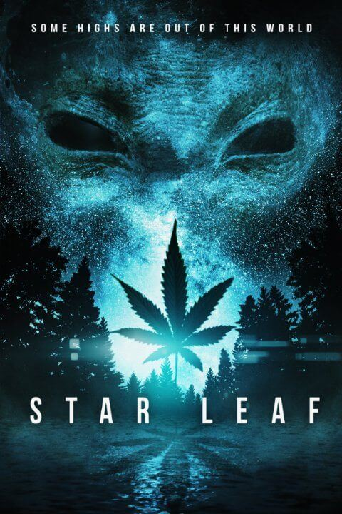 Star Leaf Artwork HOME