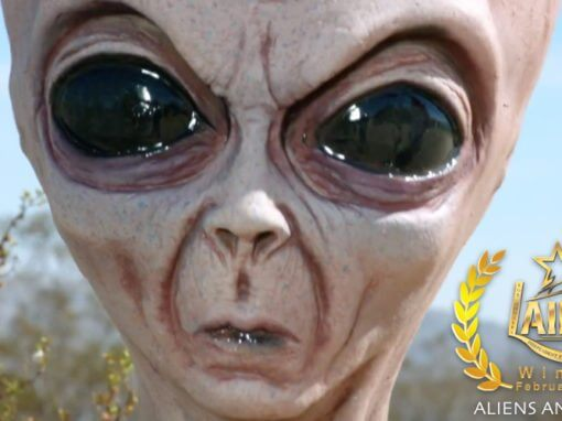 "GAE ACQUIRES LAIFFA WINNER ""ALIENS AND GUFORS"""